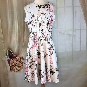 Dress Barn White Floral Sheath Dress